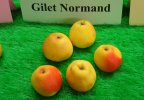 Gilet Normand